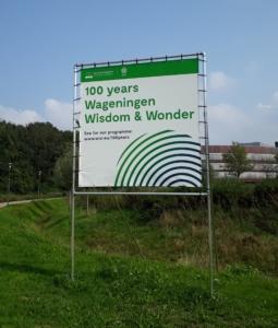 100 years wisdom open brief fresco